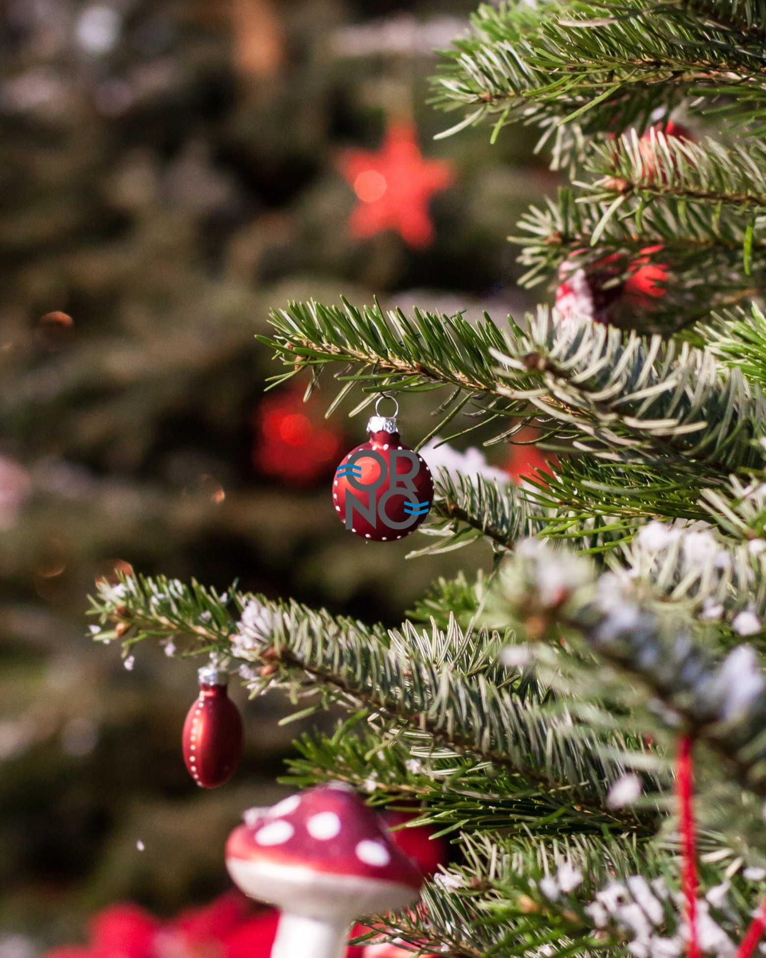 Manque d'idées pour Noël? Offrez des Orno!